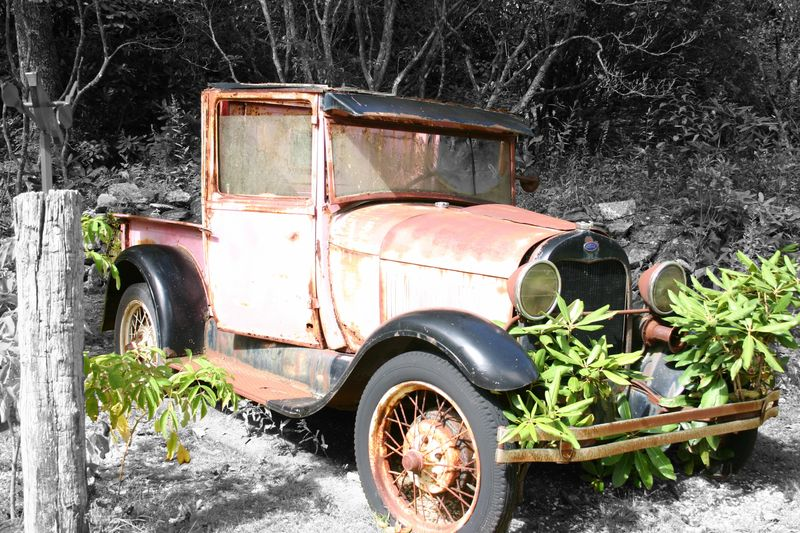 Pink Car Second Version