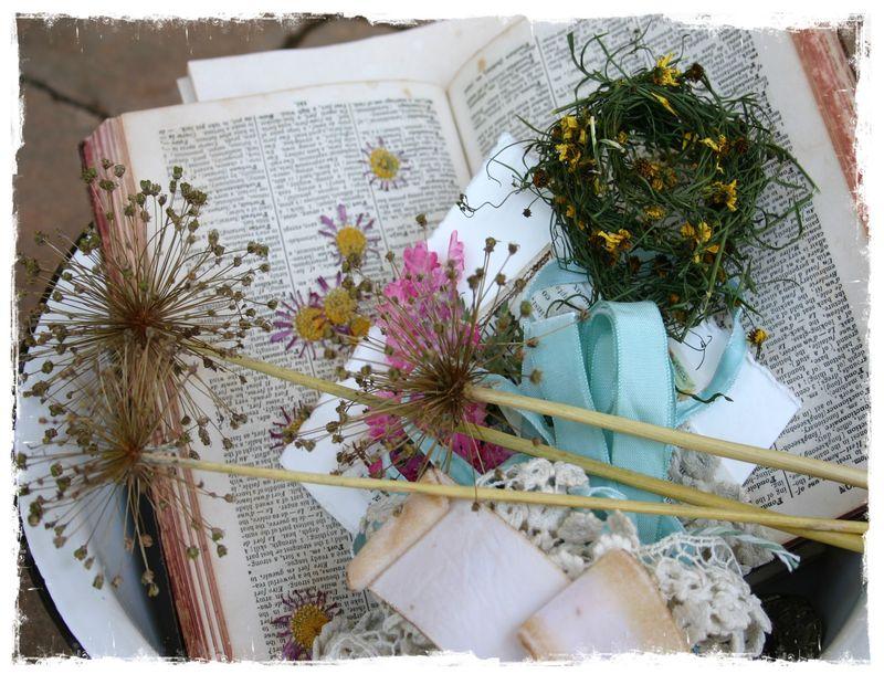 Copy of pressed flowers 053