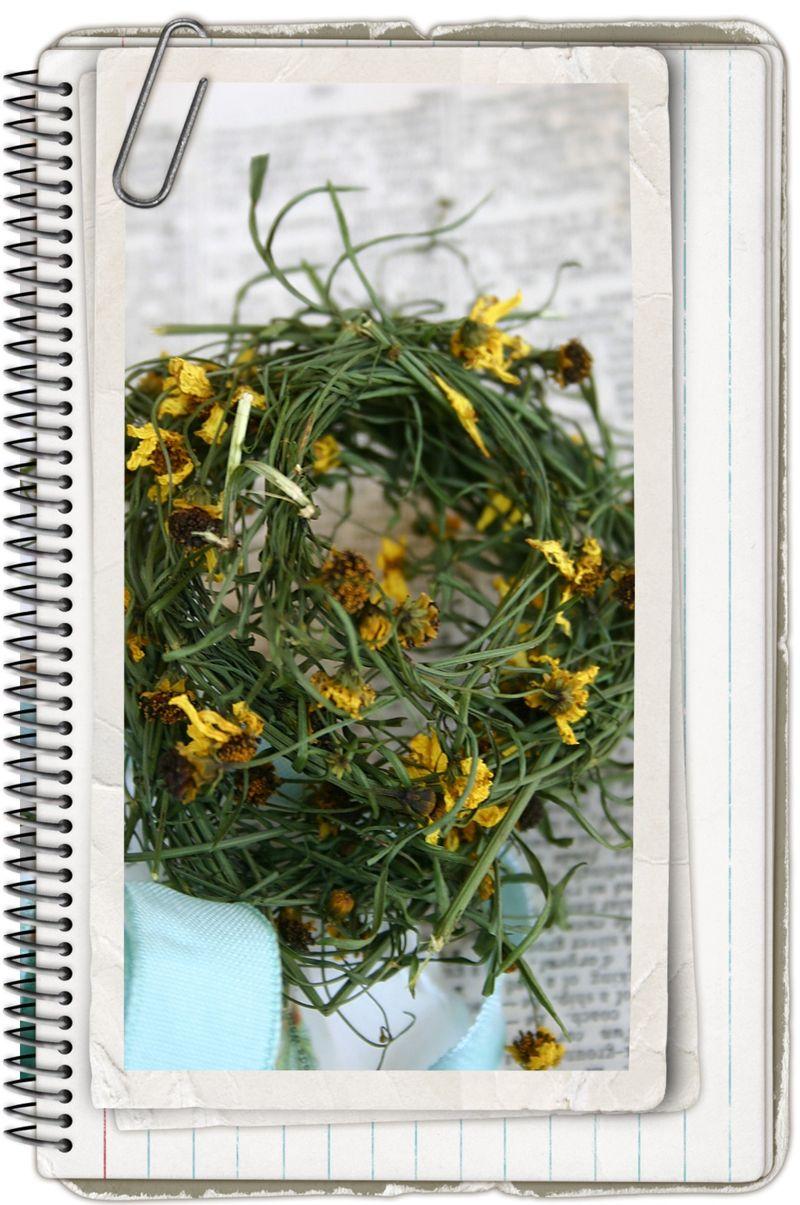 Copy of pressed flowers 055