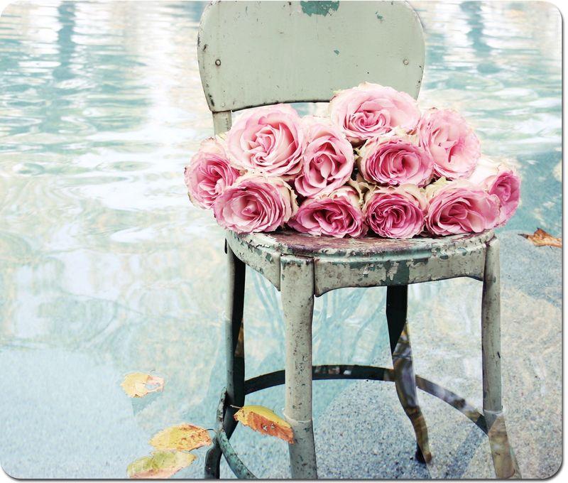 Pink-roses-454copyweb