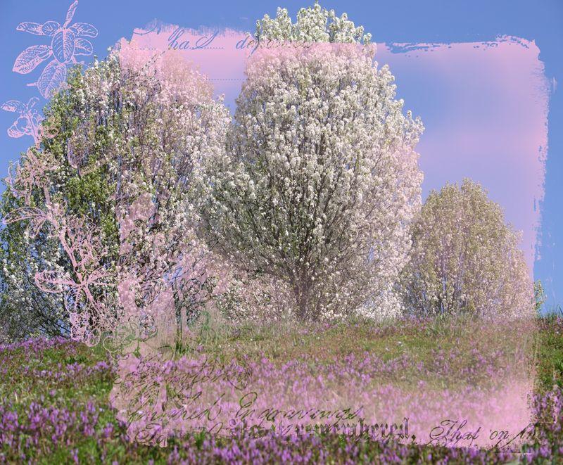 000 copy Spring, Glorious Spring jpg format