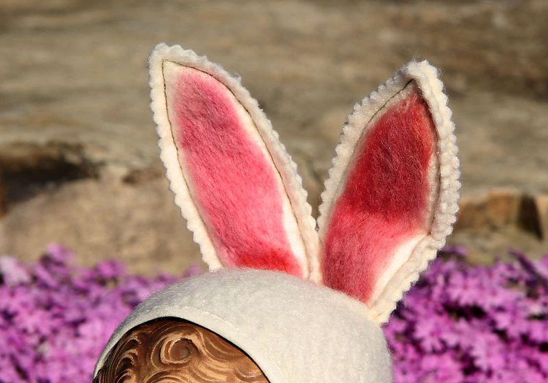Bunnyears5