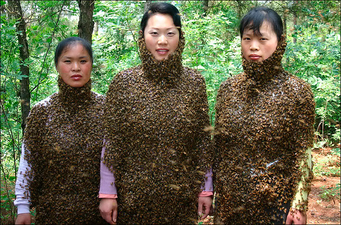 Bee ladies